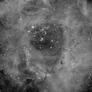 NGC2237,                                Piero.F