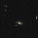 M81 + M82,                                Prolifics