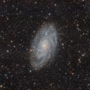 M33,                                Mario Zauner