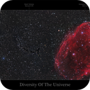 Diversity Of The Universe,                                Nicolas Kizilian