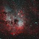 IC410-HOO Tadpole Crop,                                Seldom