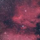 IC 5070 The pelikan nebula,                                Jürgen Ehnes