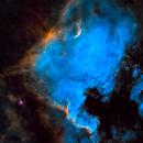 NGC 7000 + IC 5070 SHO,                                Skywalker83