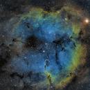 IC1396 Elephant Trunk Nebula,                                apolkowski01