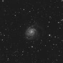 M101,                                Patryk