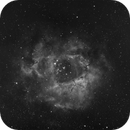 Rosette nebula,                                Pawel Turek