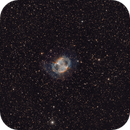 M 27:  The Dumbbell Planetary Nebula Showing the  Outer  Halo - Now With ReV. 2 - ,                                Fernando