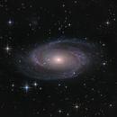 Messier 81,                                Johannes Schiehsl