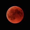 Blood Moon 2018,                                Frank Rogin