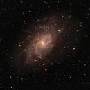 M33 Triagulum Galaxy,                                Duane R. Anderson