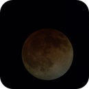 Lunar Eclipse: Totality,                                Stephen Caldwell