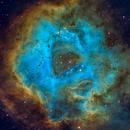 Rosette Nebula,                                Sean Mathews