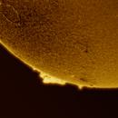 Sun (2014),                                Marco Rapino