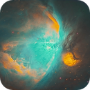 M42 in the Hubble Palette,                                Mostafa Metwally