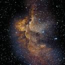 NGC 7380 - The Wizard Nebula,                                Timothy Martin & Nic Patridge