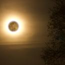 Super Moon Blend,                                Mr. Ashley McGlone