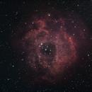 The Rosette Nebula,                                Tony Granbäck