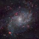 M33,                                Shailesh Trivedi