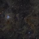 Iris Nebula Region,                                Bill