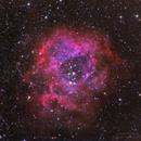 Caldwell 49 - The Rosette Nebula,                                David McGarvey