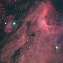 IC5070 Pelican Nebula,                                Joe Niemeyer