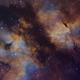 Gamma Cygni Nebula - SHO,                                Nico Carver