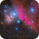 Orion nebulae widefield in HaRGB - 3 panels mosaic,                                alexbb
