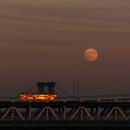 Full Moon Rising,                                Alessandro Merga...