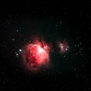 Orion Nebula,                                Tom