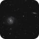 M100 and NGC4312,                                Dave Boddington