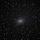NGC6744 - Galaxy in Pavo,                                Marcelo Alves