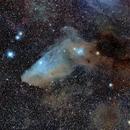 IC4592. The Blue Horsehead Nebula,                                Ray Heinle