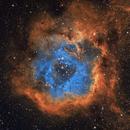 Rosette Nebula in Narrow Band,                                StephanHamel