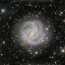 Southern Pinwheel Galaxy M83,                                Lancelot365
