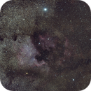 Cygnus Region,                                Molly Wakeling