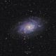 M33 - Triangulum galaxy,                                Emil Andronic