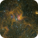 IC 417 - Spider and the Fly - DSW,                                jshortt