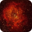 NGC 2239 Rosette Nebula,                                BDGAstro