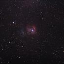The Trifid Nebula,                                Geovandro Nobre