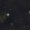 NGC 2024 @ 150/750,                                Erik