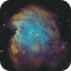 NGC 2174 - Monkey Head Nebula,                                ebomber