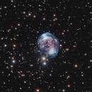 NGC 7008,                                Peter Goodhew