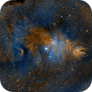 NGC 2264 - Christmas Tree and Cone in SHO,                                Michael J. Mangieri