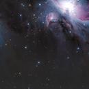M43 off center,                                Scotty Bishop