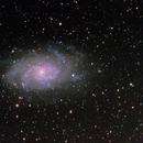 Triangulum Galaxy M33,                                PapaMcEuin