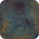 Elephant's Trunk Nebula SHO,                                Jason Doyle Sr