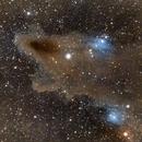 Shark Nebula - LDN 1235,                                Mark Carter