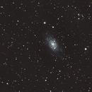 NGC2403 ,                                nahual