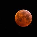 Blood Moon 21/01/2019,                                Michael Völker