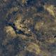 First light with ASI183MM-Pro - Sadr region,                                Ben
